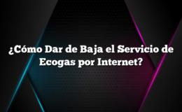 ¿Cómo Dar de Baja el Servicio de Ecogas por Internet?