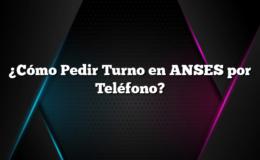 ¿Cómo Pedir Turno en ANSES por Teléfono?