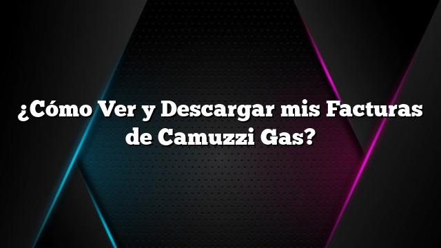 ¿Cómo Ver y Descargar mis Facturas de Camuzzi Gas?