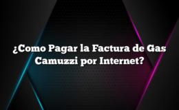 ¿Como Pagar la Factura de Gas Camuzzi por Internet?