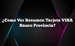 ¿Como Ver Resumen Tarjeta VISA Banco Provincia?