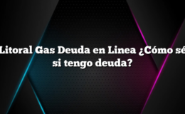 Litoral Gas Deuda en Linea ¿Cómo sé si tengo deuda?