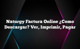 Naturgy Factura Online ¿Como Descargar? Ver, Imprimir, Pagar